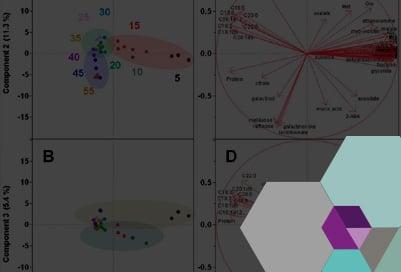 sinnetic-analítica-sensorial-y-diseño-de-sabores-1